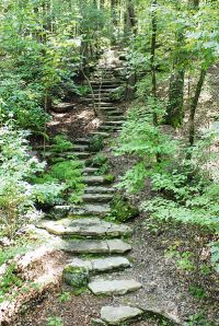 401px-Stone_steps_in_the_woods
